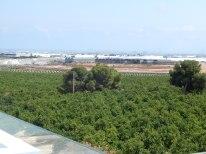 view from villa roof solarium